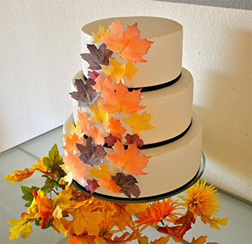 Edible Fall Leaves Assorted Set