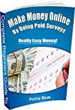 Complete Beginners Guide to Make Money Online By Doing Paid Surveys