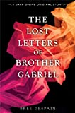 The Lost Letters of Brother Gabriel (A Dark Divine Original)