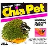 Chia Pet Pet, Frog 1 ea