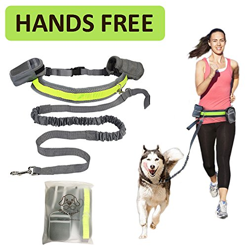 boxlegendr-hands-free-dog-leash-elastic-with-reflective-stripe-perfect-for-running-walking-training-