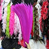 Maslin 50pcs 45-50CM/long Silver Pheasant Tail Feathers DIY Wedding Decorations Lady Amherst red Silver Chicken Feather Plume - (Color: Rose) (Color: Rose)