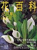 週刊花百科 64 水芭蕉と高原の花