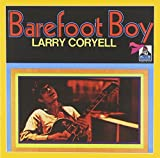 Barefoot Boy by Larry Coryell