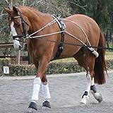 Equestrian Horse Riding Lunging Roller Schooling Training Aid System Pessoa Equipment Item