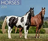 2014 Horses Deluxe Wall Calendar