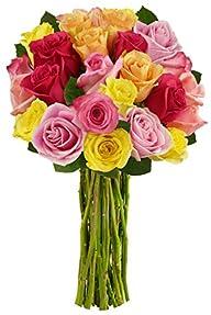 Benchmark Bouquets 2 Dozen Rainbow Ro…