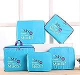 EZ Life 5 Piece Travel Bag-in-bag Organizers Nylon - Light weight- Blue