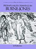 img - for Pre-Raphaelite Drawings by Burne-Jones (Dover Art Library) book / textbook / text book