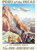 TRAVEL TRANPORT AIRLINE TOURISM PERU INCA ANDES LLAMA MACHU PICCHU FINE ART PRINT POSTER 30x40cm CC2090