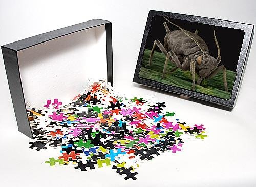 Photo Jigsaw Puzzle Of Lrds-1 Black Aphid From Ardea Wildlife Pets
