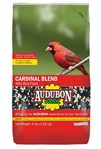 Audubon Park Cardinal Blend Wild Bird Food, 4-Pound
