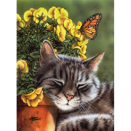 Cheap SunsOut Afternoon Nap 1000pc Jigsaw Puzzle by Marilyn Barkhouse (B0034N0NLQ)