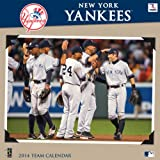 Turner - Perfect Timing 2014 New York Yankees Team Wall Calendar, 12 x 12 Inches (8011424)