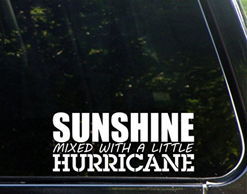 Sunshine Mixed With A Little Hurricane - 8
