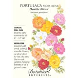 Portulaca Moss Rose Double Blend