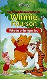 echange, troc Les Nouvelles aventures de Winnie l'ourson : Winnie et le tigre fou [VHS]