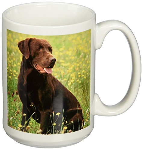 3dRose Chocolate Labrador Retriever Mug, 15-Ounce