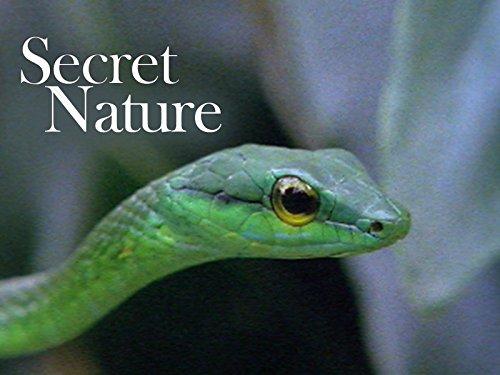Secret Nature on Amazon Prime Video UK