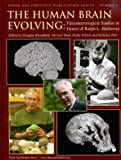 img - for The Human Brain Evolving: Paleoneurological Studies in Honor of Ralph L. Holloway (Stone Age Institute Publication) book / textbook / text book