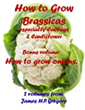 img - for Cabbages and Cauliflower - How to grow them book / textbook / text book