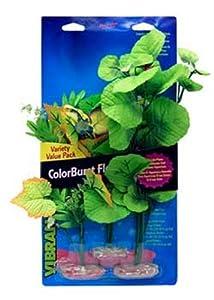 Vibran-Sea Broad Leaf Flowering Cluster Aquarium Plant Assortment