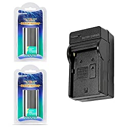 Neewer 2600mAh Li-ion Battery and Charger Kit for Neewer CN-160,CN-216,CN-126 CN-304 LED Light and Sony HandyCams,Nanguang, Polaroid Lights Using NP-F550/F570/F530 Batteries