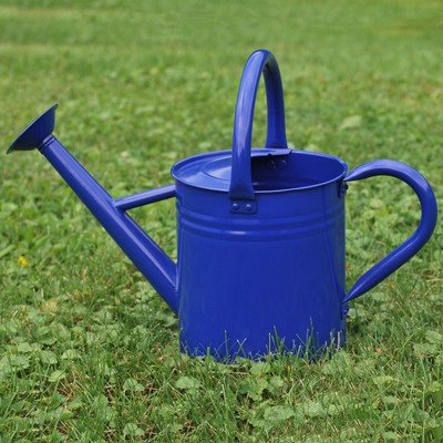 Gardener's Select Watering Can, Blue, 7 L (Blue Watering Can compare prices)