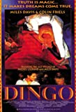 Dingo [Import]