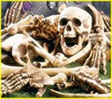 Bag of Plastic Skeleton Bones Halloween Decor