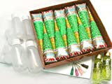 Beachcombers! Henna Tattoo 10 Pre Mixed Paste Cone Party Pack w/Oil & Fine Metal Tip Applicator Bottles