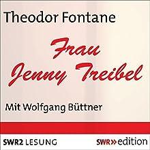 Frau Jenny Treibel (       ungekürzt) von Theodor Fontane Gesprochen von: Wolfgang Büttner