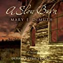 A Slow Burn: Defiance Texas Trilogy, Book 2 (       UNABRIDGED) by Mary E. DeMuth Narrated by Reneé Raudman