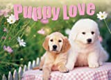 Puppy Love (Gift Book)