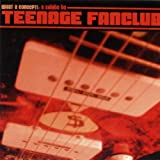 What a Concept!: A Tribute to Teenage Fanclub