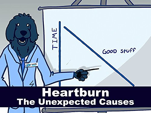 Heartburn - The Unexpected Causes (What Can Cause D compare prices)