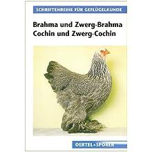 Brahma und Zwerg-Brahma