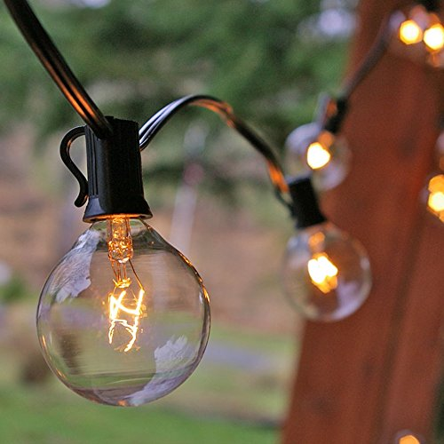 Globe String Lights, 2 Inch Bulbs, Incandescent Clear Glass Bulbs, 50 Feet Black Wire, Outdoor, Patio Bistro String Light, Wedding, Event, End to End Connectable, Bulbs Included, Clear