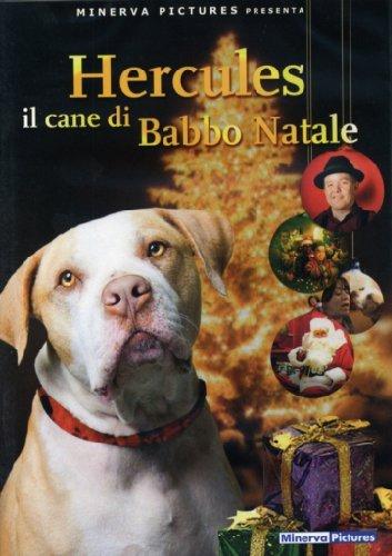 hercules-il-cane-di-babbo-natale