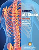 img - for Anatomy at a Glance book / textbook / text book