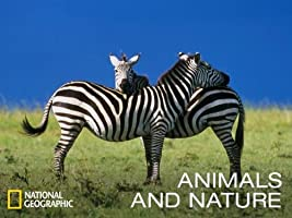 Animals & Nature Season 1