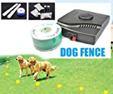 Esky Waterproof Electronic Fence Dog Shock Collar System with two collars