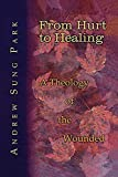 img - for From Hurt to Healing: A Theology of the Wounded book / textbook / text book