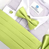 Lime Green Silk Pre-tied Bow Tie for Mens Bow Tie and Cummerbund Set with Present Gift Box Cm1001