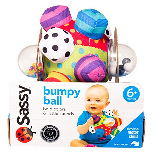 Sassy Developmental Bumpy Ball