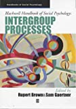 Intergroup processes /