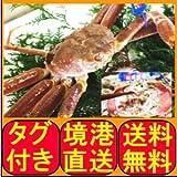 鳥取県産 松葉ガニ 3尾 (450?550g ×3) ボイル