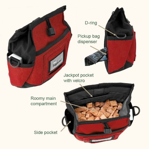 Rapid Rewards Training Pouch, by Doggone Good.