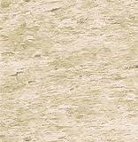 Brewster 431-7292 Northwoods Lodge Birchbark Wallpaper, 20.5-Inch by 396-Inch, Neutral