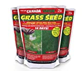 Canada Green Grass Seed: 500g. 3 x 500g Bags. Bulk Offer